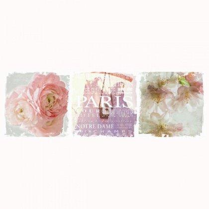 Obraz na plátně - růže
