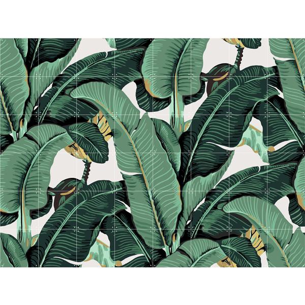 Skládaný obraz IXXI - Banana Leaf S