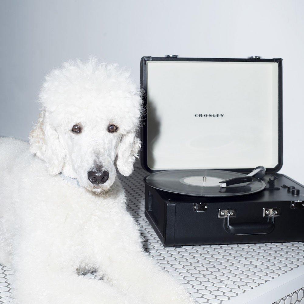 Gramofon Crosley Portfolio Black