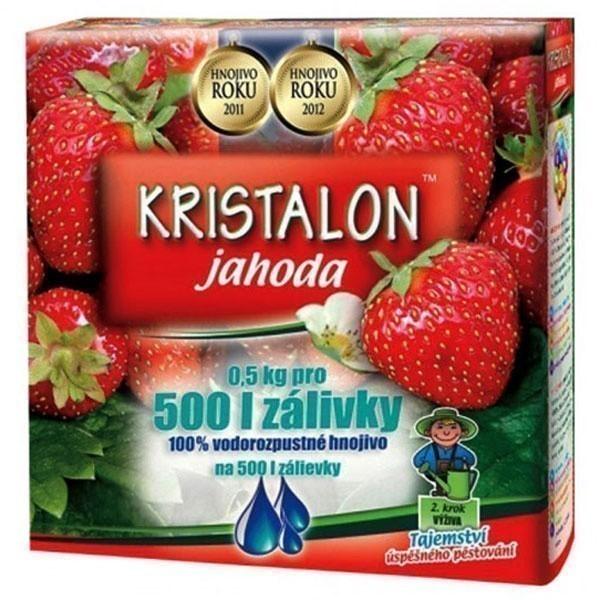 Hnojivo KRISTALON na jahody